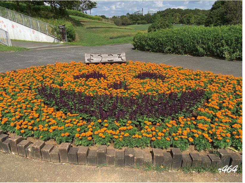 【イベント】オータムフェア(北総花の丘公園)